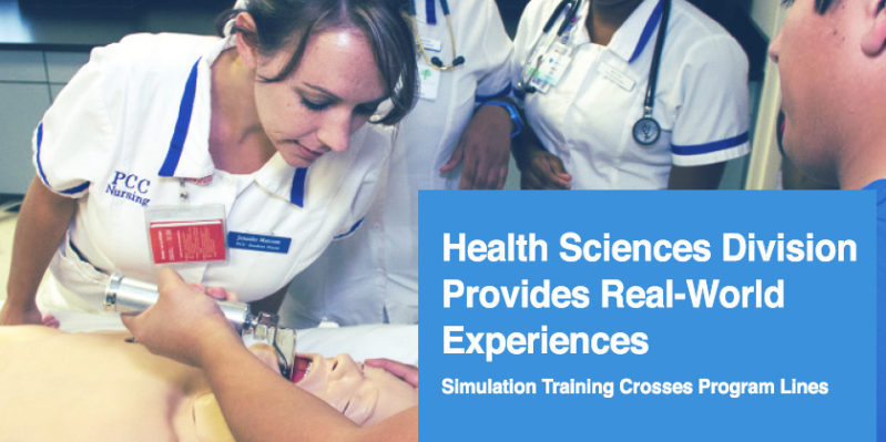 Learning in Simulated Environments
